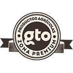 Guanajuato Zona Premium