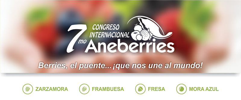 aneberries2017