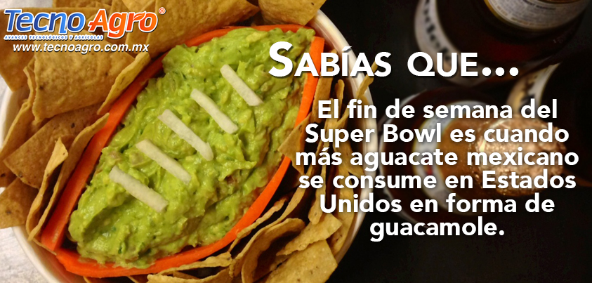guacamole super bowl