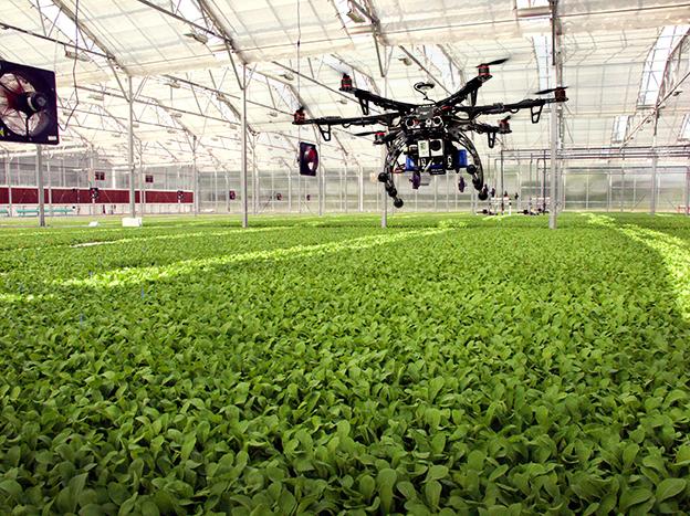 Resultado de imagen para drones invernadero